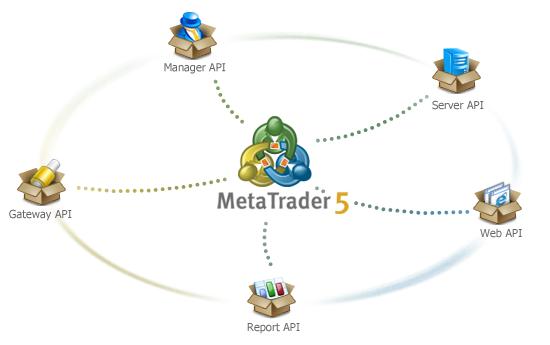 MetaTrader 5 for Brokers