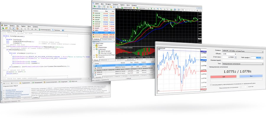 Best forex traders to copy quest